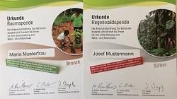 Werden auch Sie - symbolisch - zum Baumpaten oder zum Regenwald-Besitzer!
